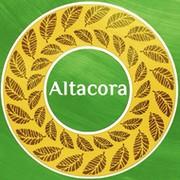 Проект Духовного Развития — Альтакора группа в Моем Мире.