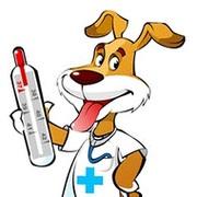 """Ветеринарная клиника """"НЕОТЛОЖКА"""" группа в Моем Мире."""