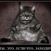 Nadezda Sergeeva on My World.