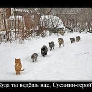 Т. Александр on My World.